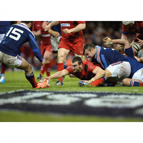 Sam Warburton Digital Print Welsh Rugby Wales Rugby Rugby Gifts