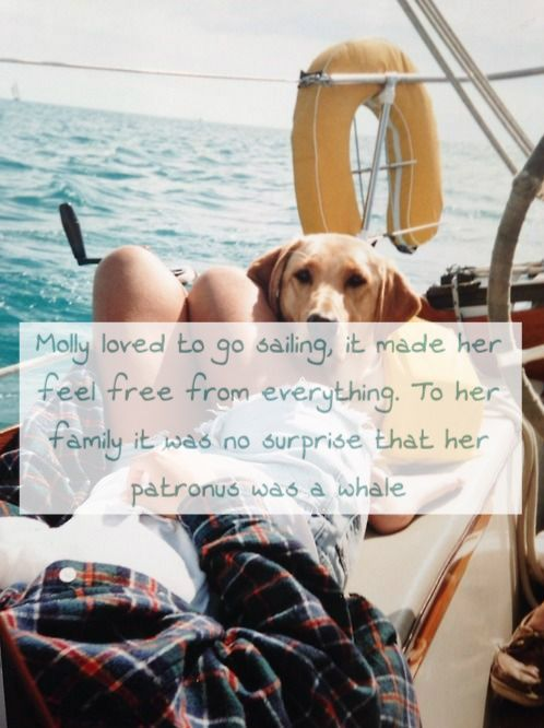 Molly loved to go sailing, it made her feel free from everything. To her family it was no surprise that her patronus was a whaleRequested by anon