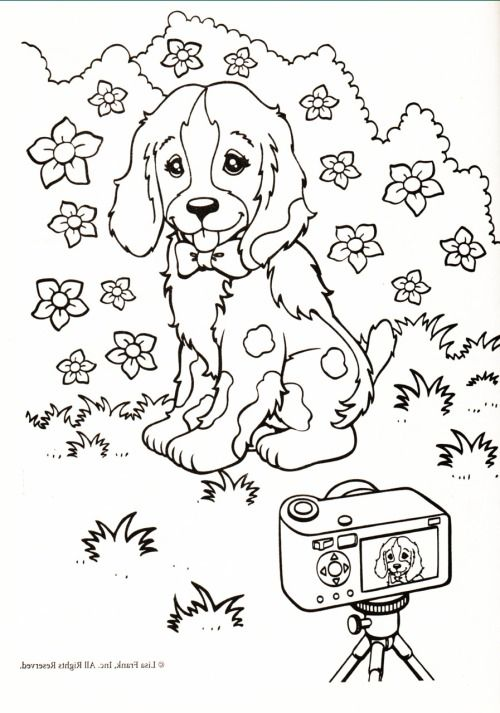Kleurplaat Hond Fotocamera Coloring 4 Pinterest Coloring Pages