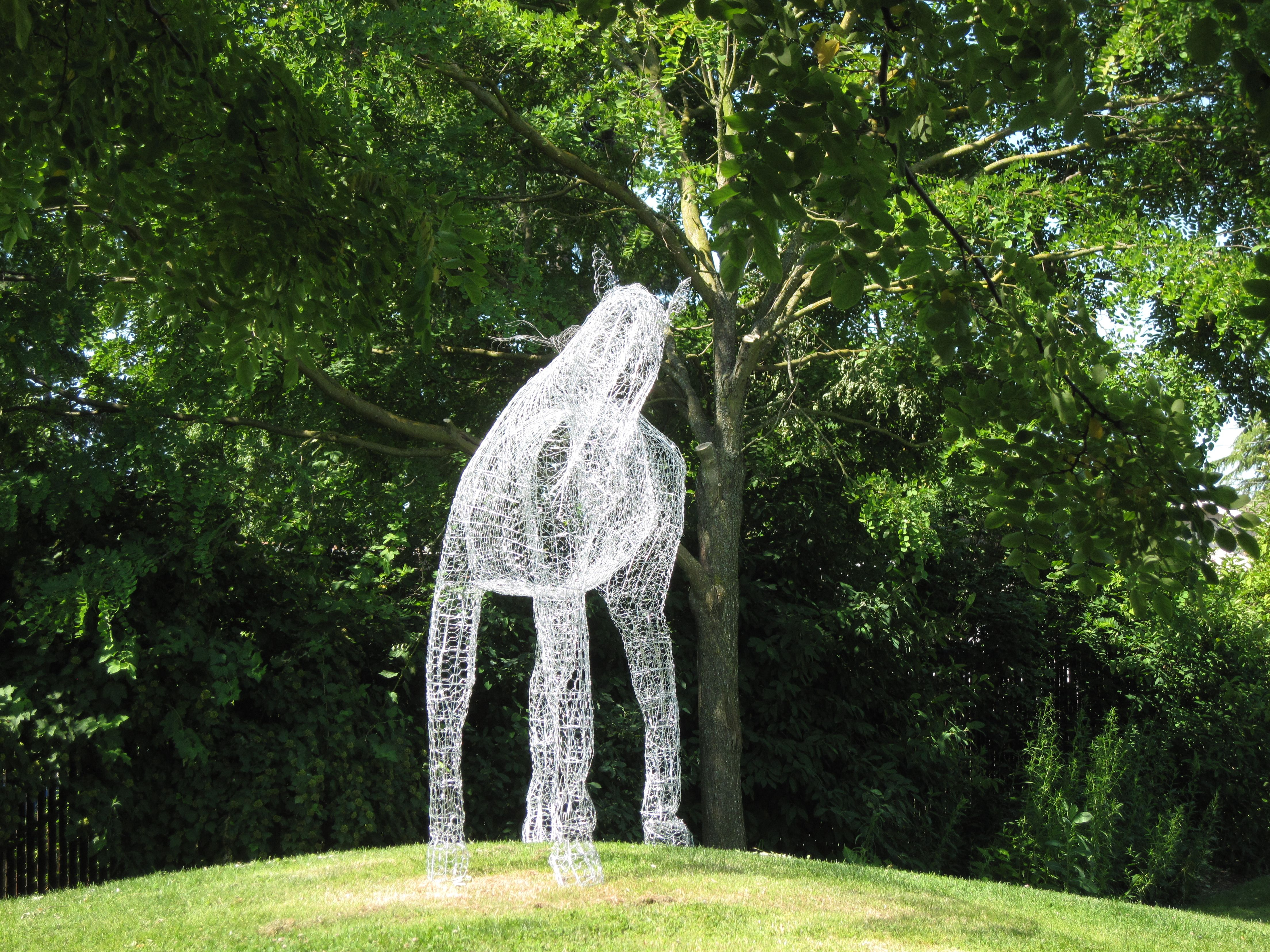 Ghostly life-size horse sculpture made from chicken wire | Garden ...