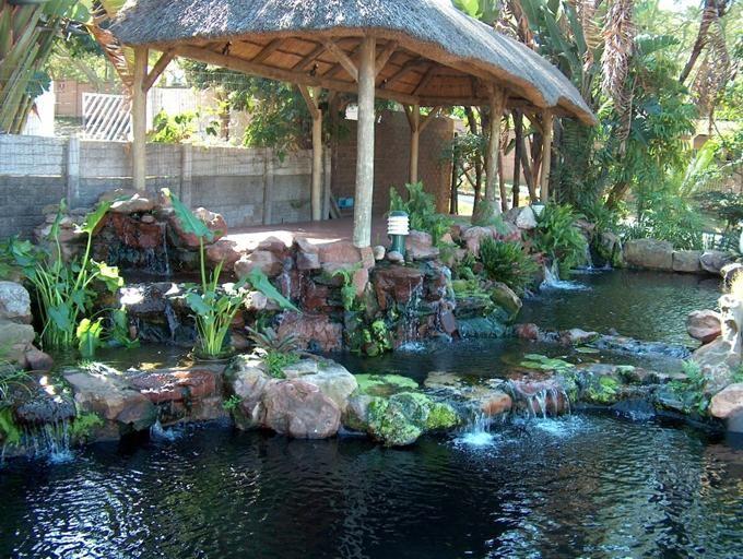Koi pond patio happy koi happy koi koi keeping done for Koi holding pool