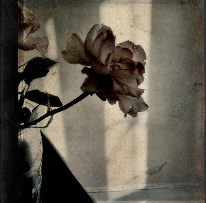 pale by ~aglayan-agac on deviantART