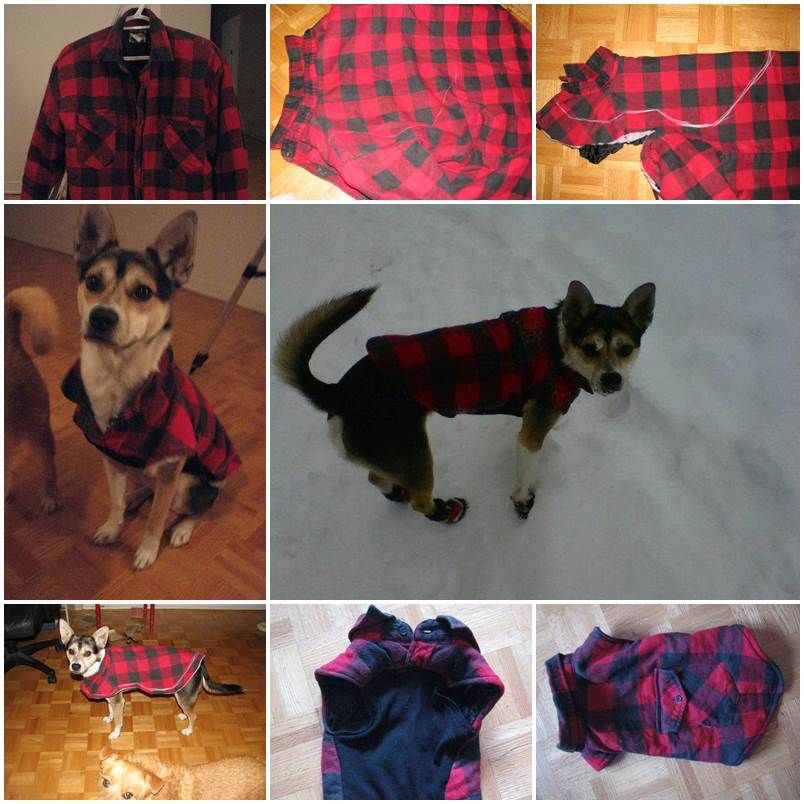 1ca4f86aef3d DIY Dog Winter Jacket from Old Shirt