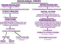 Sociological Theory Micro V Macro Sociology What I Dissertation Sociologie De Organisations Organisation