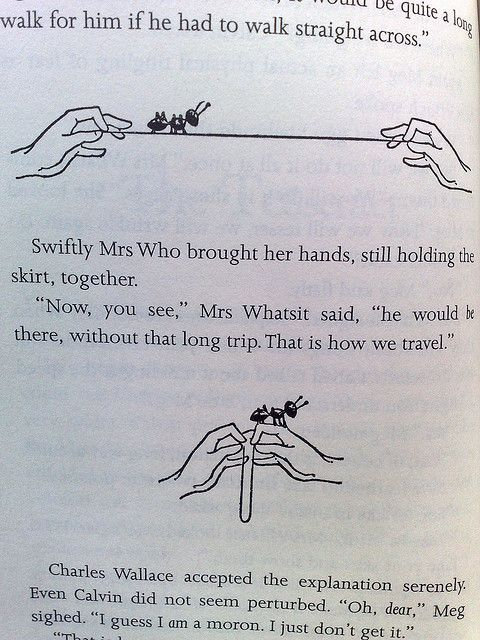 A Wrinkle In Time Ant Crossing String Illustration And That My