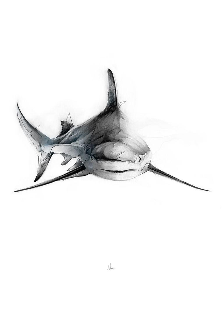 Shark III» Art Print by Alexis Marcou | Tiburones, Tatuajes y ...