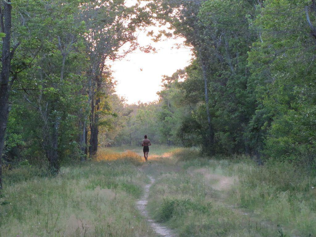 George Bush Park Texas My Texas Park Houston Texas Travel
