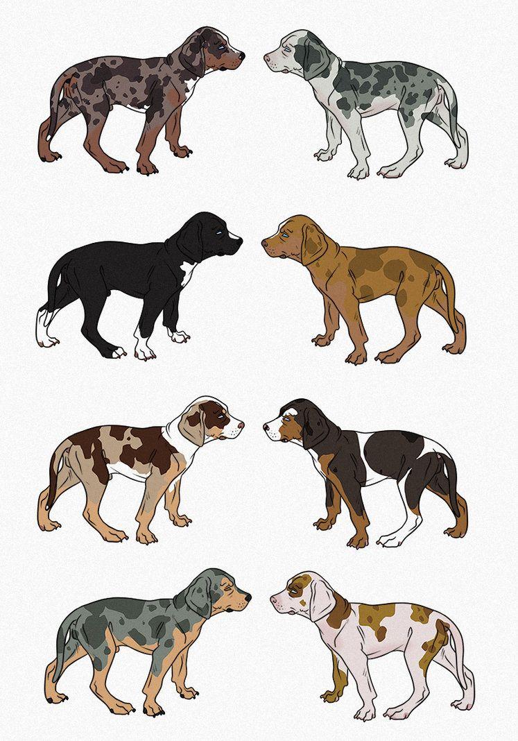Catahoula Leopard Dog Import Litter by Gutter-Mutt on deviantART