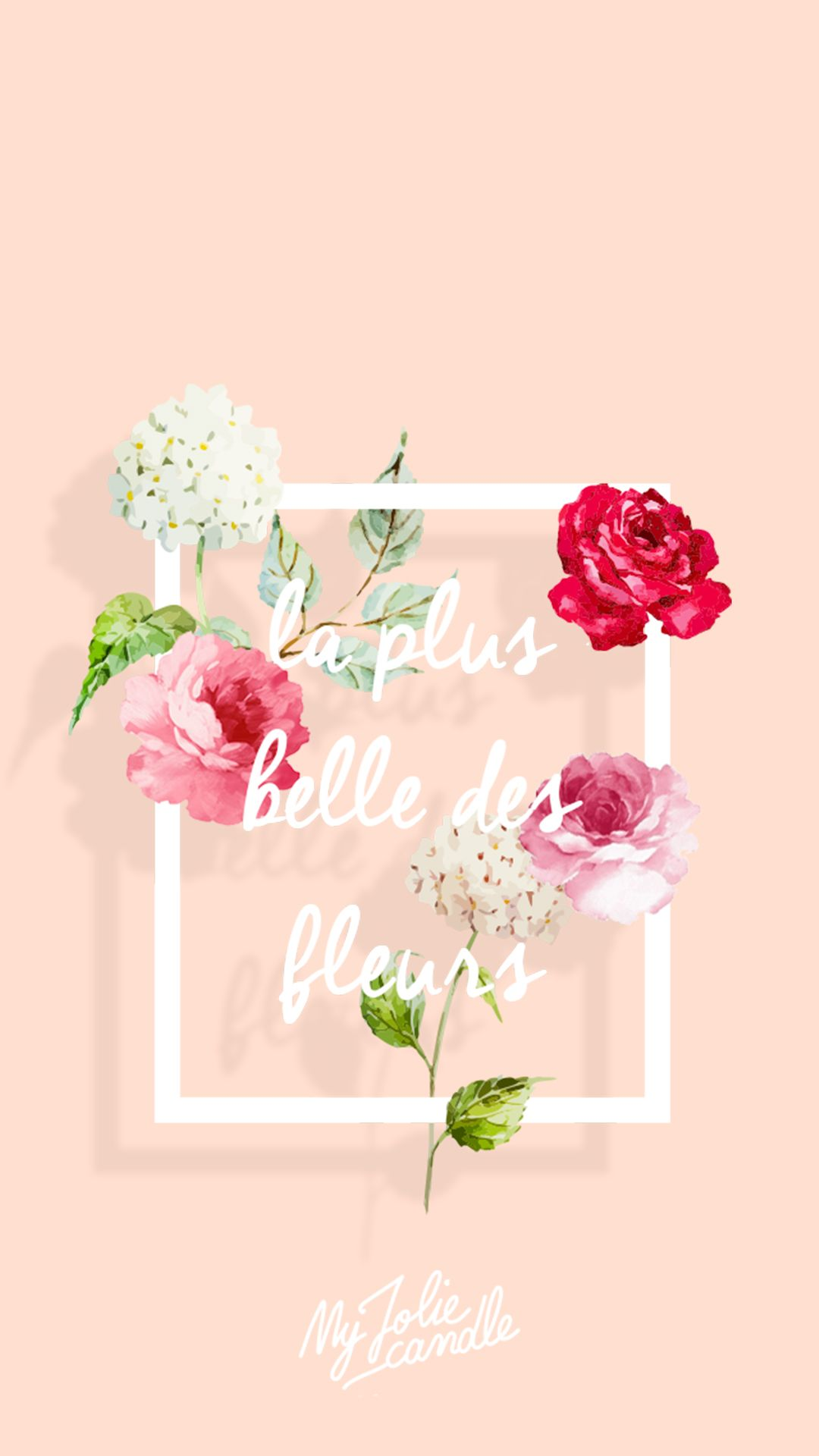 Belle Flower Peach iPhone Wallpaper Lock Screen PanPins