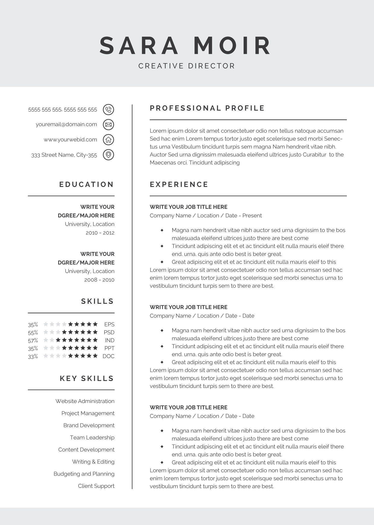 Professional Resume Template Resume template