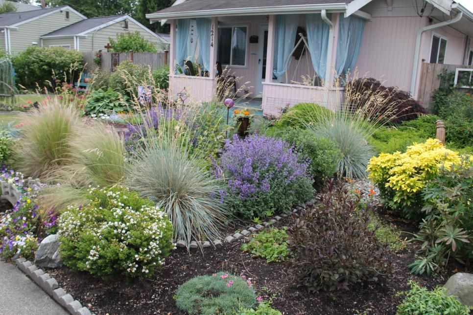 Plant Shapes And Textures Add Some Design Elements To Your Landscape By Playin Low Maintenance Garden Low Maintenance Garden Design Low Maintenance Landscaping