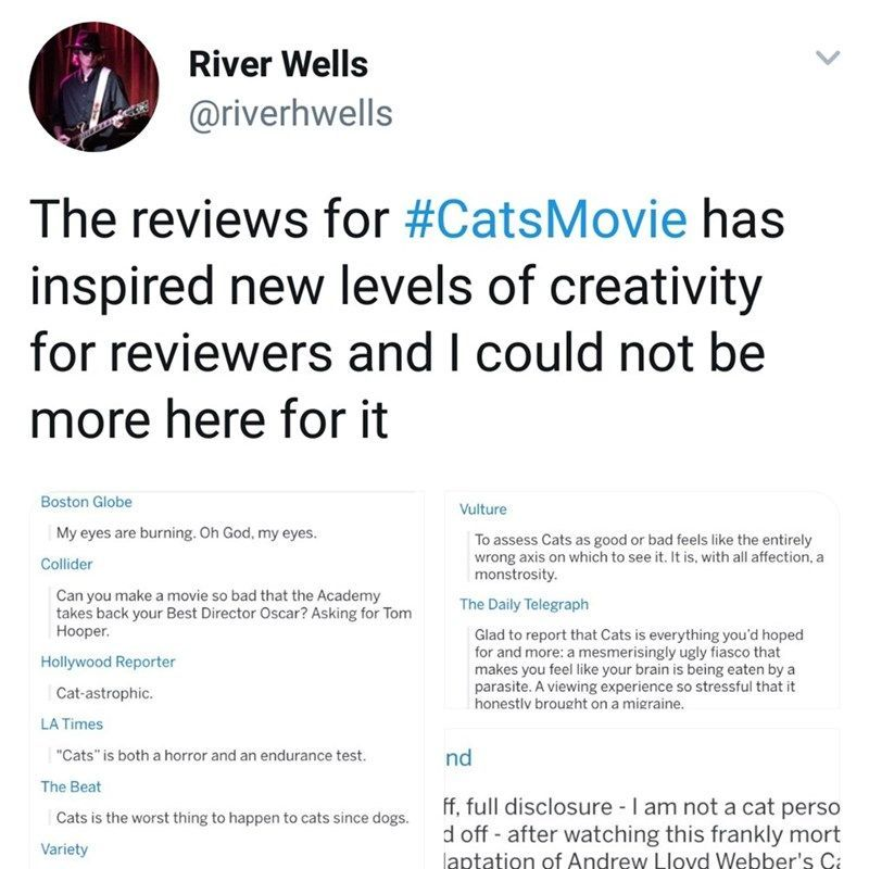 "Best Funny Girl Cats Movie Review Is A Goldmine Of Comedic Savagery Reviewers had some harsh words for ""Cats"" #cats #movie #reviews #funny #fail 10"