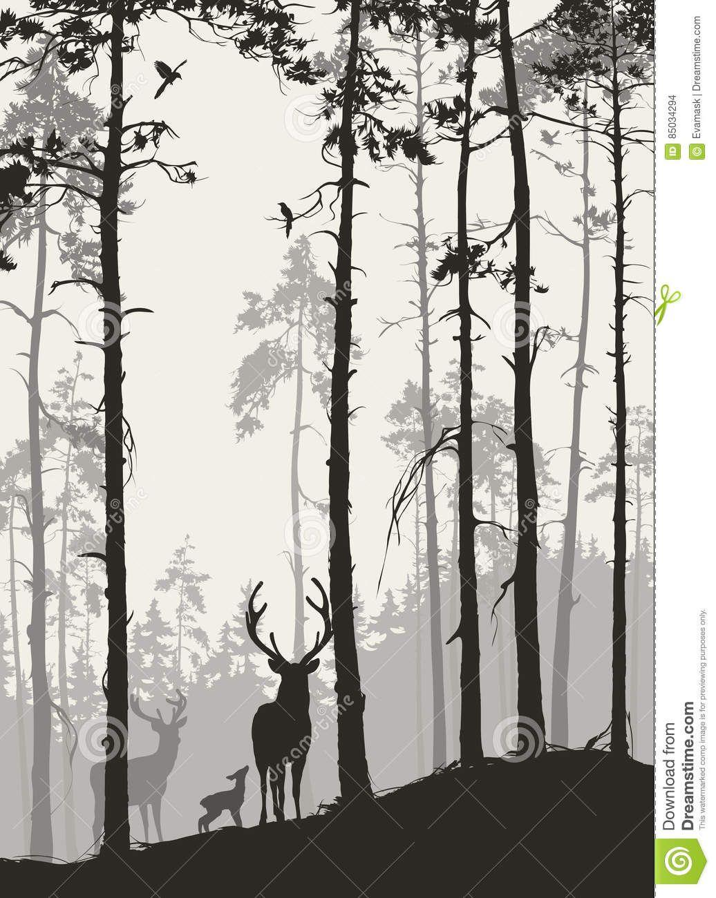 Abetaia Di D Con Una Famiglia Dei Cervi E Degli Uccelli Illustrazione Vettoriale Immagine 85 Wallpaper Con Foreste Tatuaggi A Tema Foresta Profilo Di Cervo