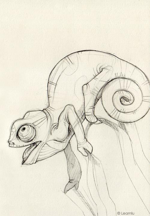 83e67ff88 chameleon sketch - Google Search | Animal Variety | Dessin, Croquis ...