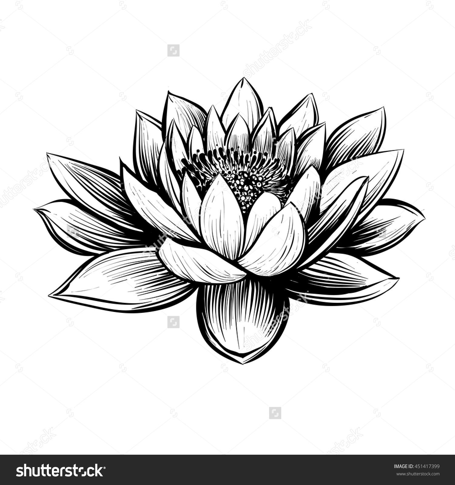 Pin By Catalina On To Sketch Water Lily Tattoos Lily Flower Tattoos Lotus Tattoo Design