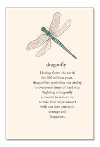 Dragonfly--having flown the earth for 300 million years, dragonflies symbolize our ability to overcome times of hardship...