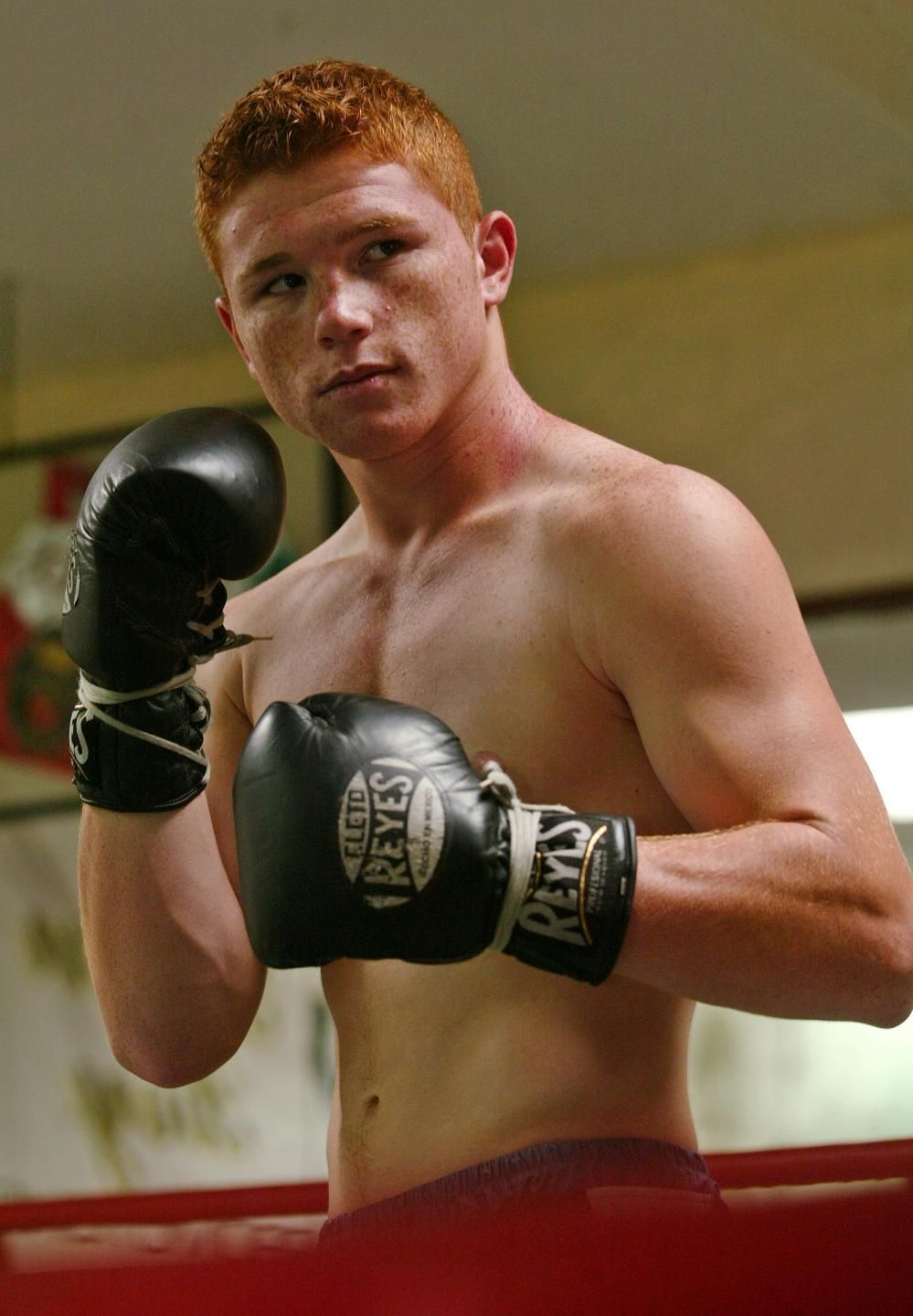 Saul Canelo Alvarez Is An Undefeated Mexican Professional Boxer In