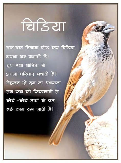 Chidiyya (Sparrow)