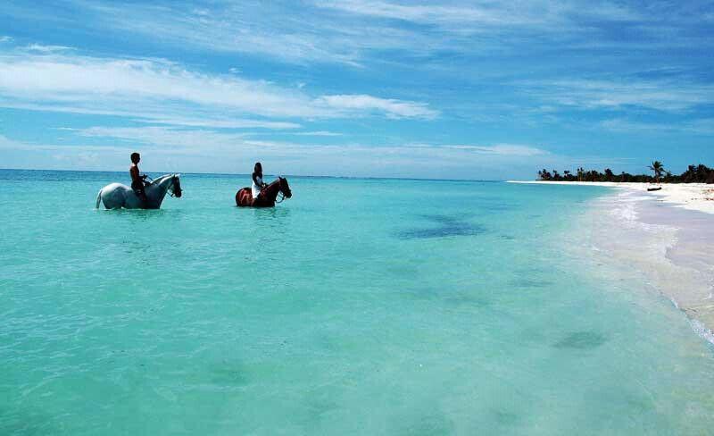 Quintana Roo Riviera Maya Playa Del Carmen Beach Backhorse Ridding Photo By