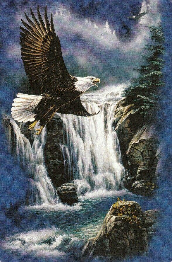 Adelaar Eagle Quilt Eagle Art Bald Eagle Eagle Painting