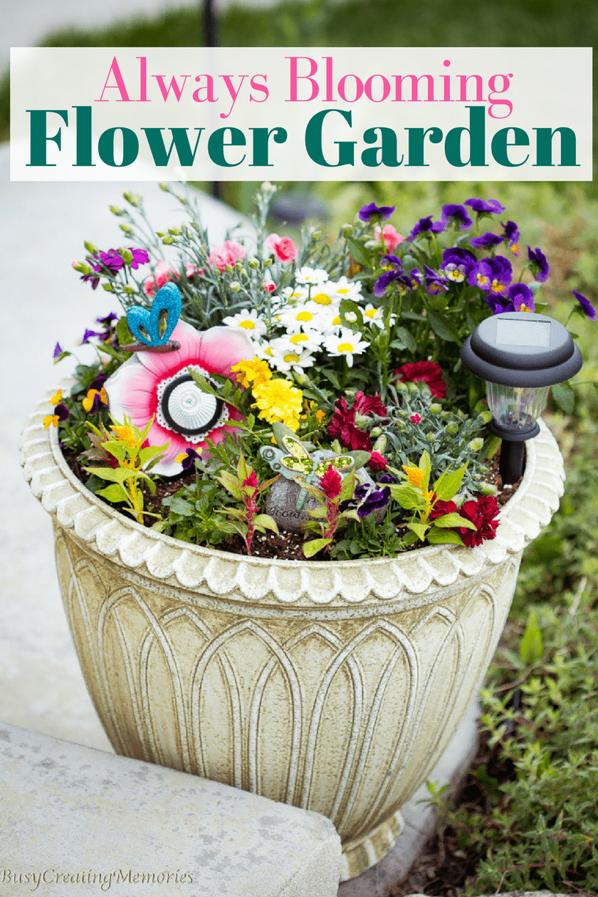 Plant An Always Blooming Flower Garden