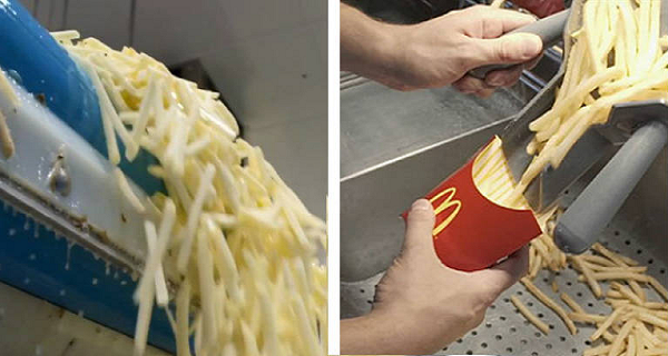 Everyone knows that processed foods are harmful to our health. Recently, Grant Imahara, host of the popular Mythbusters show, visited a McDonald's fry factory to examine what kind of ingredients they are using in the popular product. Through reverse-engineering, he managed to isolate a...