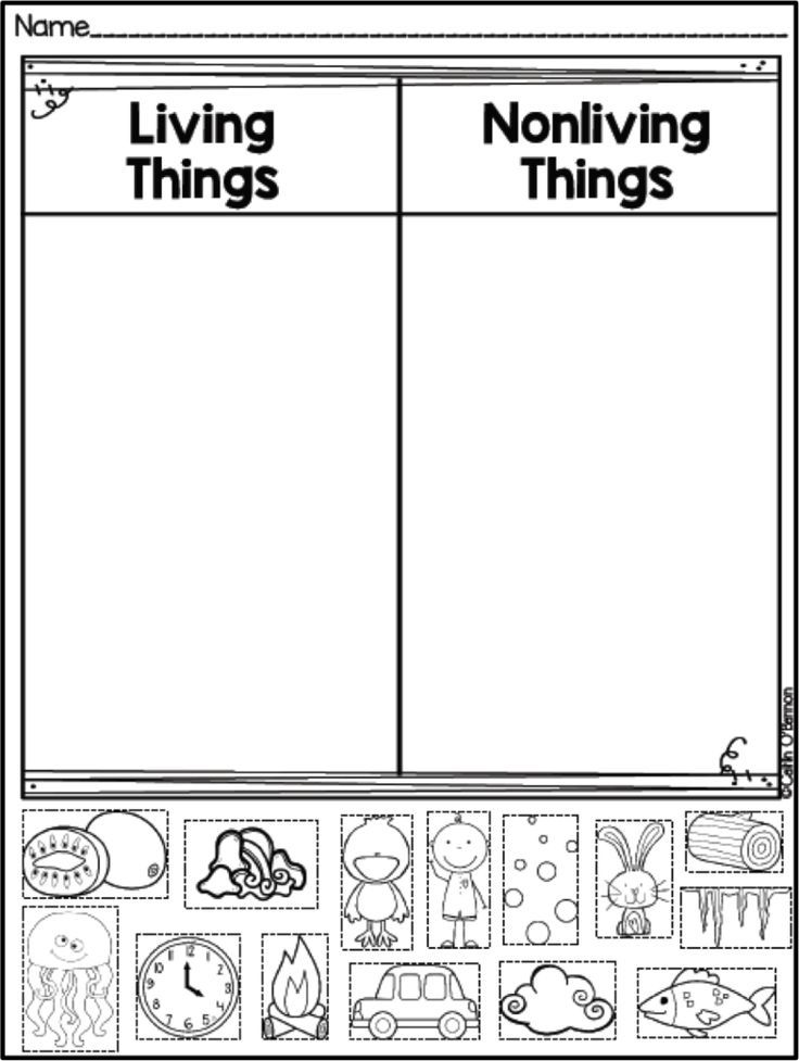 Freebie Living And Non Living Things Sort Kindergarten