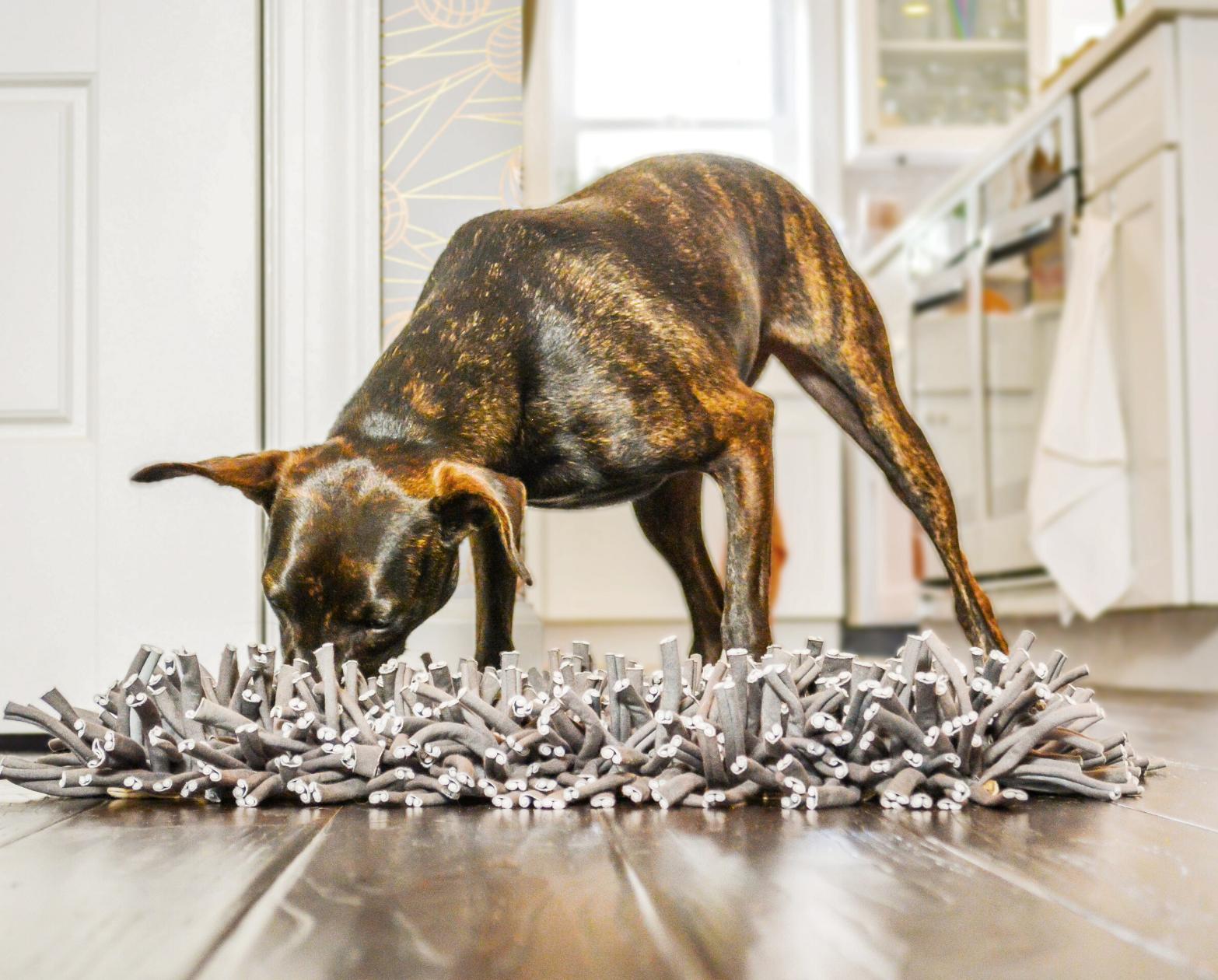 Wooly Snuffle Dog Feeding Mat in 2020 Dog