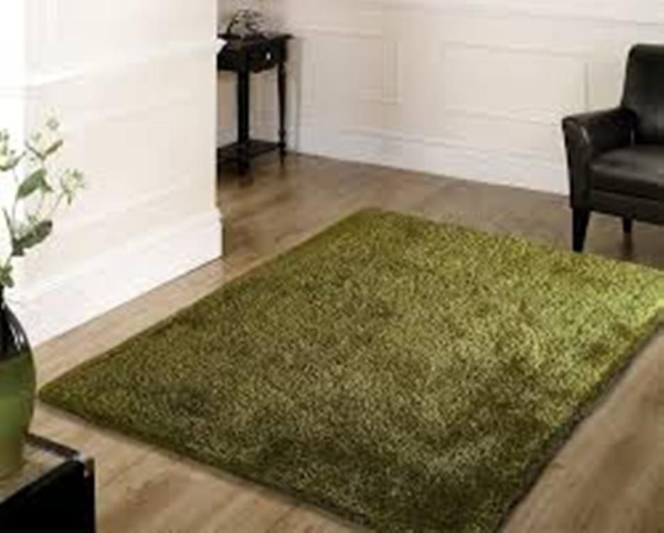Shaggy Small Area Rug Olive Green