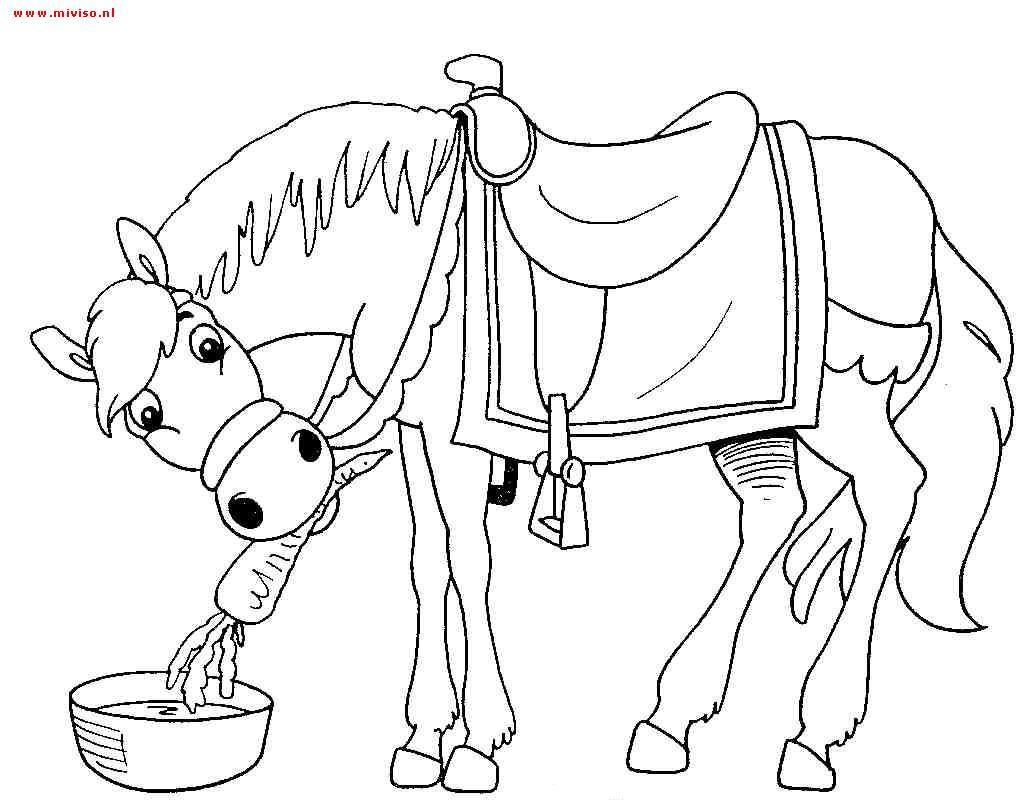 Kleurplaat Paard Van De Sint Sinterklaas Pinterest Drawing For