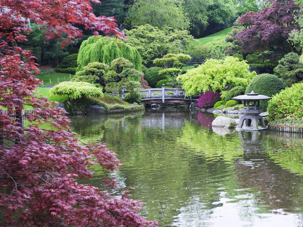 Brooklyn Botanic Garden Plant Sale 2015 Google Search Brooklyn Botanical Garden Japanese Garden Japanese Garden Design
