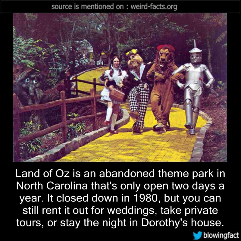 Land Of Oz Is An Abandoned Theme Park In North...