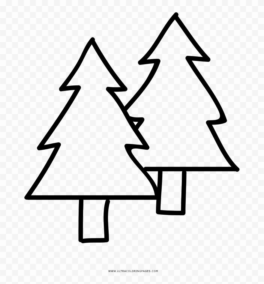 Pine Tree Coloring Page Awesome Pine Trees Coloring Page Clipart Clipart Download Seekclipart Tree Coloring Page Coloring Pages Pine Tree