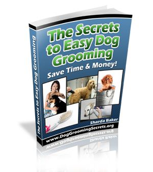 Dog Grooming From Head To Tail An Amazing Guide For Dog Owners Dog Grooming Dog Care Tips Dog Care