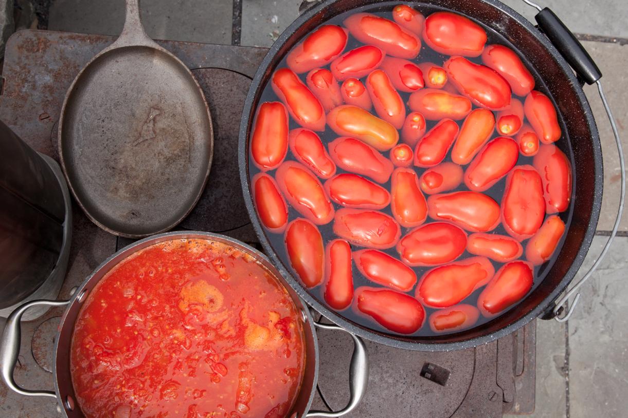 #harvest #vegetables #photography #garden #tomato
