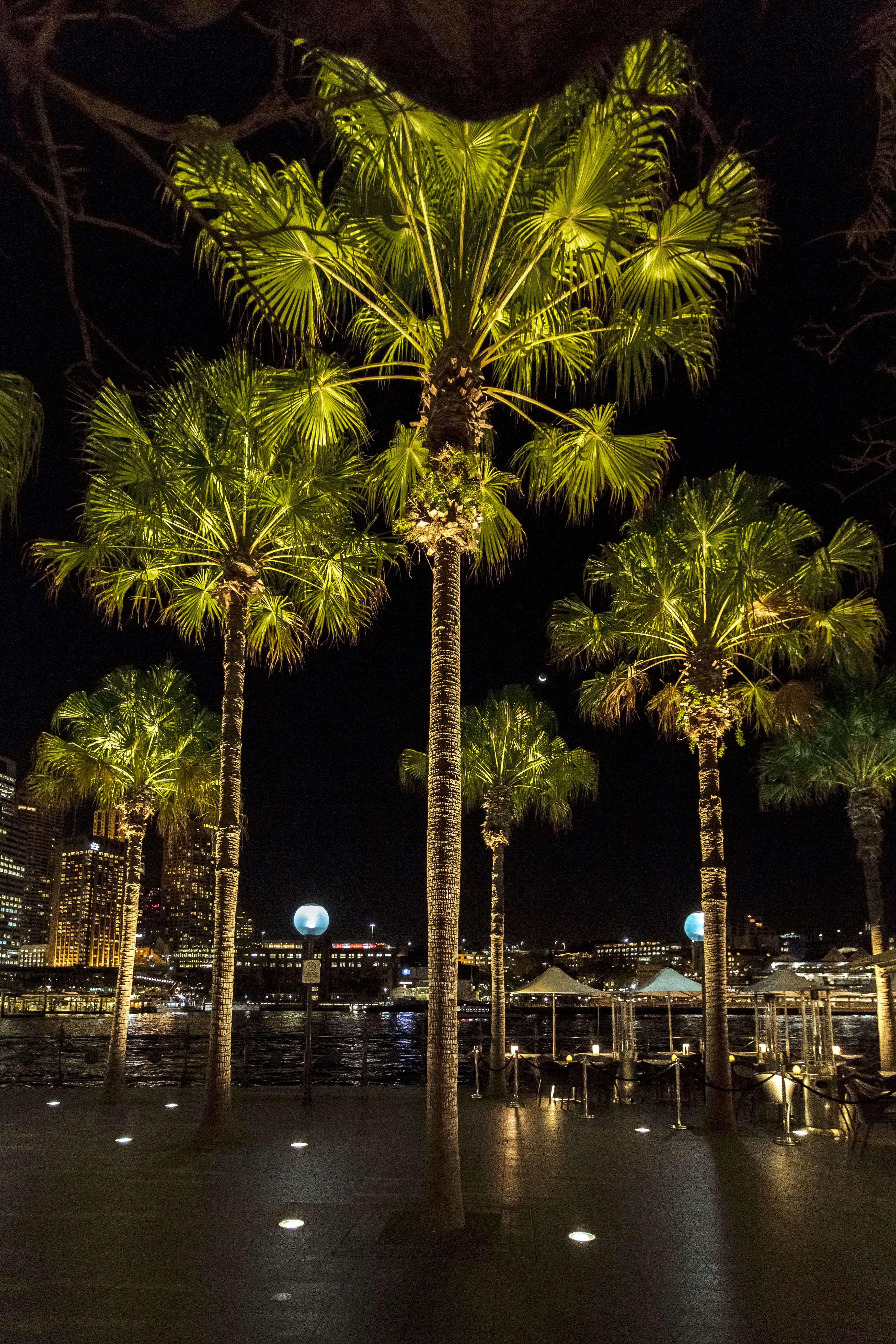 A stroll along Circular Quay offers not only a view of the ...