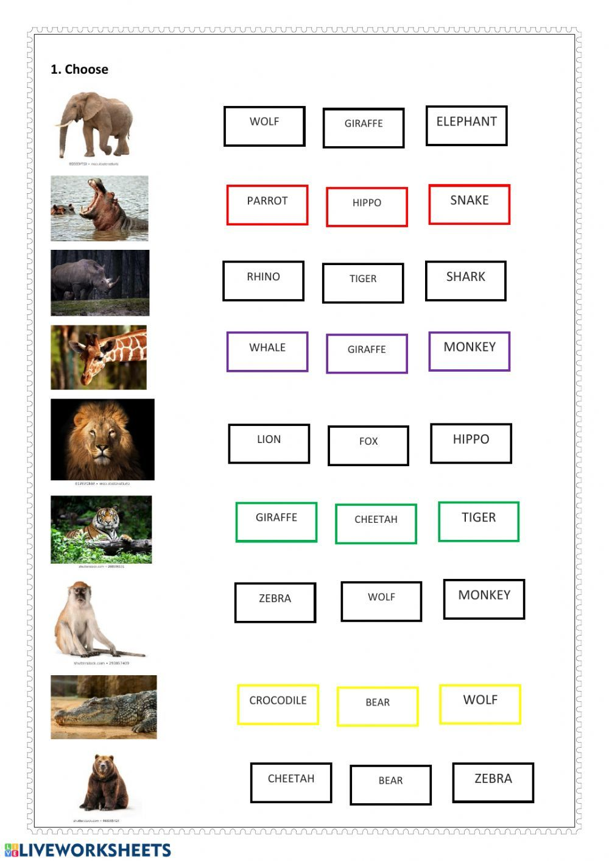 Wild Animals Interactive Worksheet Animals Wild Animals Worksheets [ 1413 x 1000 Pixel ]