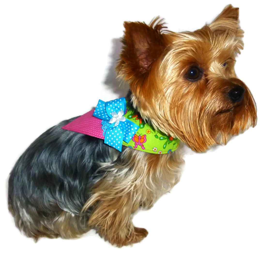 Dog bandana pattern 1767 3x 4x 5x dog clothes pattern dog dog bandana pattern 1767 3x 4x 5x dog clothes pattern dog wedding bandana pet apparel dog attire designer dog clothes pattern jeuxipadfo Image collections
