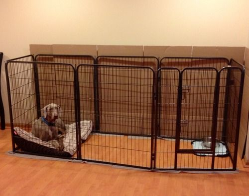 Pin By Kristen Buzzelli On For The Pups Dog Playpen Dog Kennel Pet Playpens
