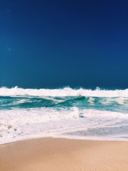 maui || hawai'i
