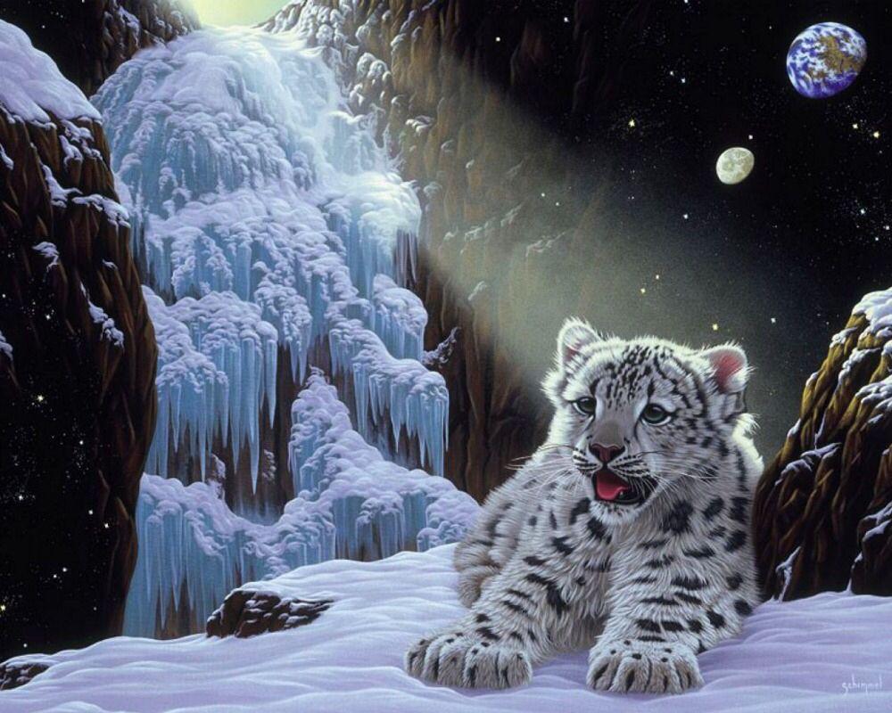 Imagen de http://g02.a.alicdn.com/kf/HTB1r6vjHVXXXXcBXFXXq6xXFXXXI/Diy-diamond-painting-40X30CM-font-b-Snow-b-font-font-b-Leopard-b-font-Cub-square.jpg.