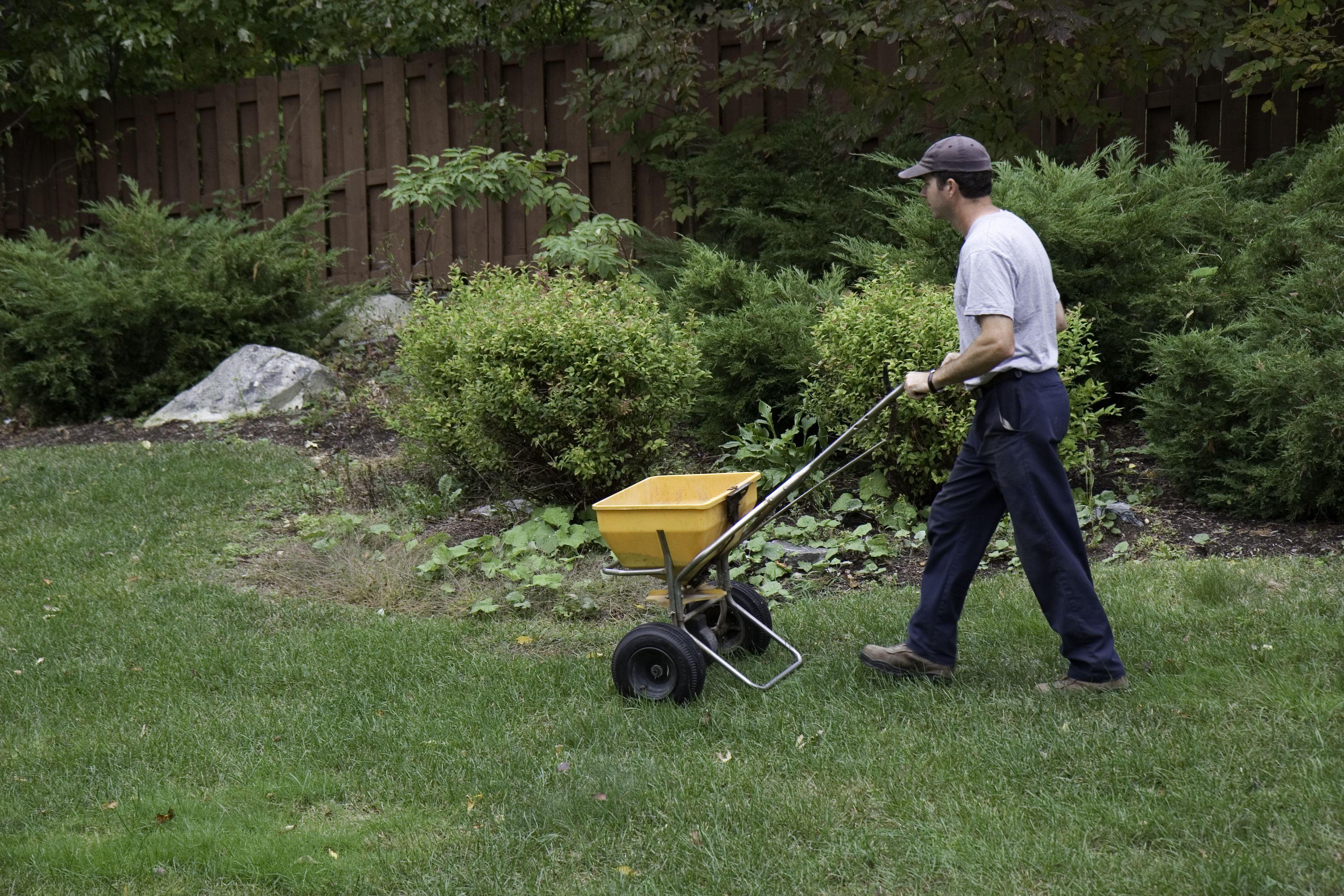 Why It S Important To Fertilize In Late Fall Lawn Fertilizer