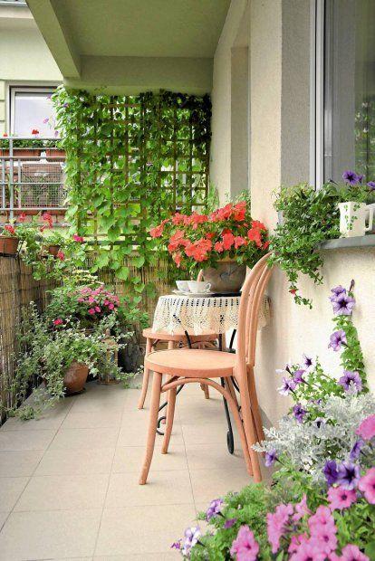 Balkon Wiejska Sielanka Balkon Wychodzi Na Poludniowy Wschod Przez Kilka Godzin Dziennie Jest Wiec Wystawiony Na Dzialanie S Outdoor Gardens Balcony Garden