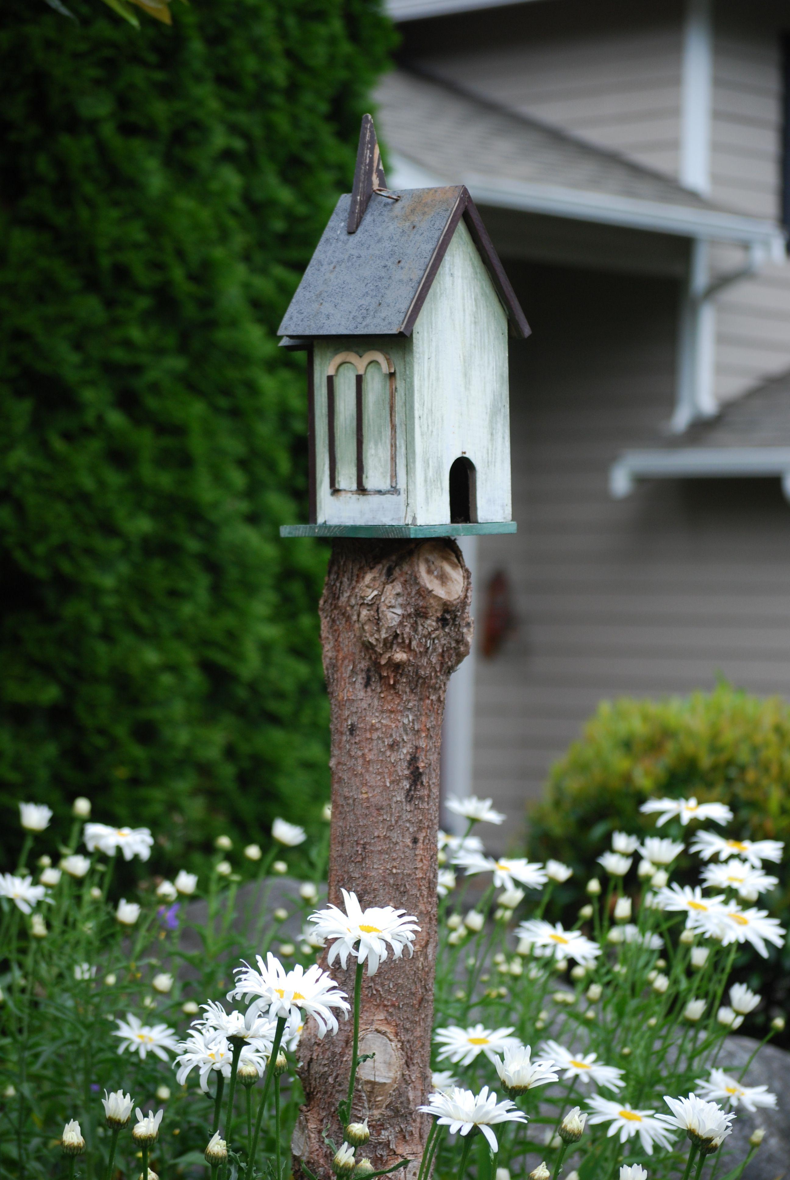 House garden trees  bird house on tree stump  Gardening  Pinterest  Tree stump Bird