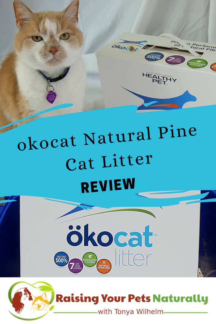 Natural Cat Litter Reviews okocat Natural cat litter