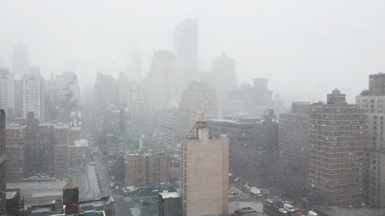 Good thing winter is over! Check out these gorgeous photos of New York's first day of spring
