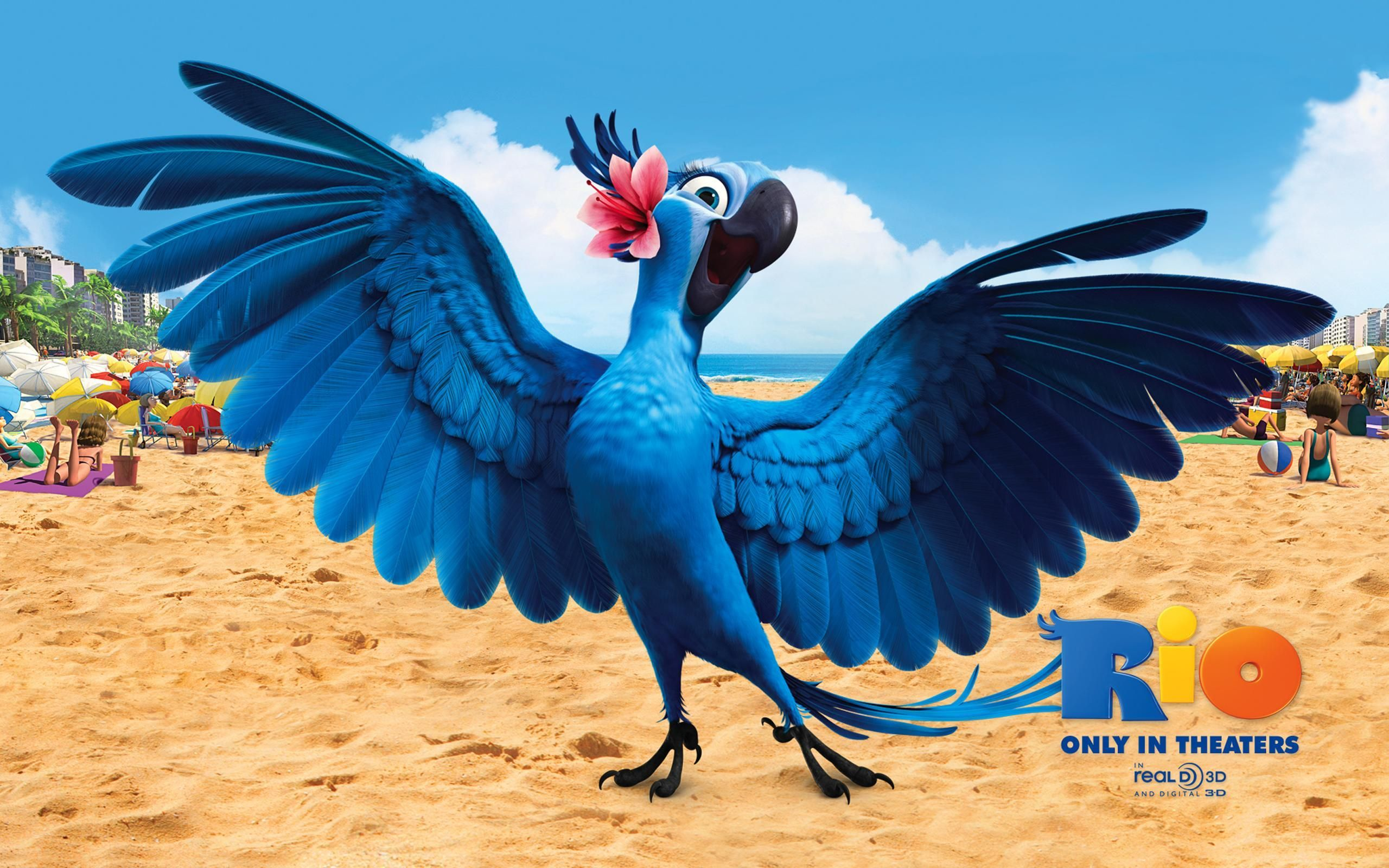 Jewel In Rio Hd Wallpaper Download Awesome Nice And High Quality Hd Wallpapers From Backgroundwallpapershd Fo Rio Movie Movie Art Print Angry Bird Pictures