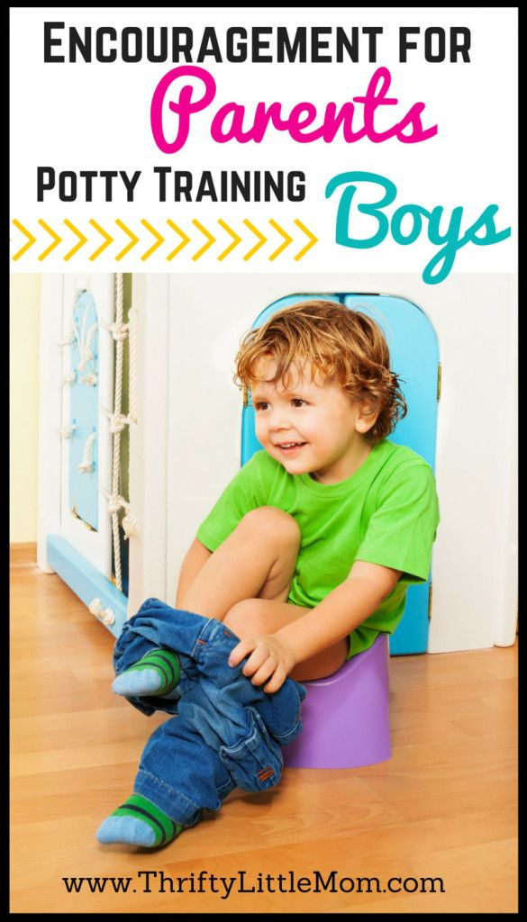 Toilet Training - Babyology - Parent School