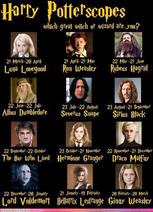 Harry Potter Photo Harry Potter Zodiac Astrology Harry Potter Funny Harry Potter Memes Harry Potter Obsession