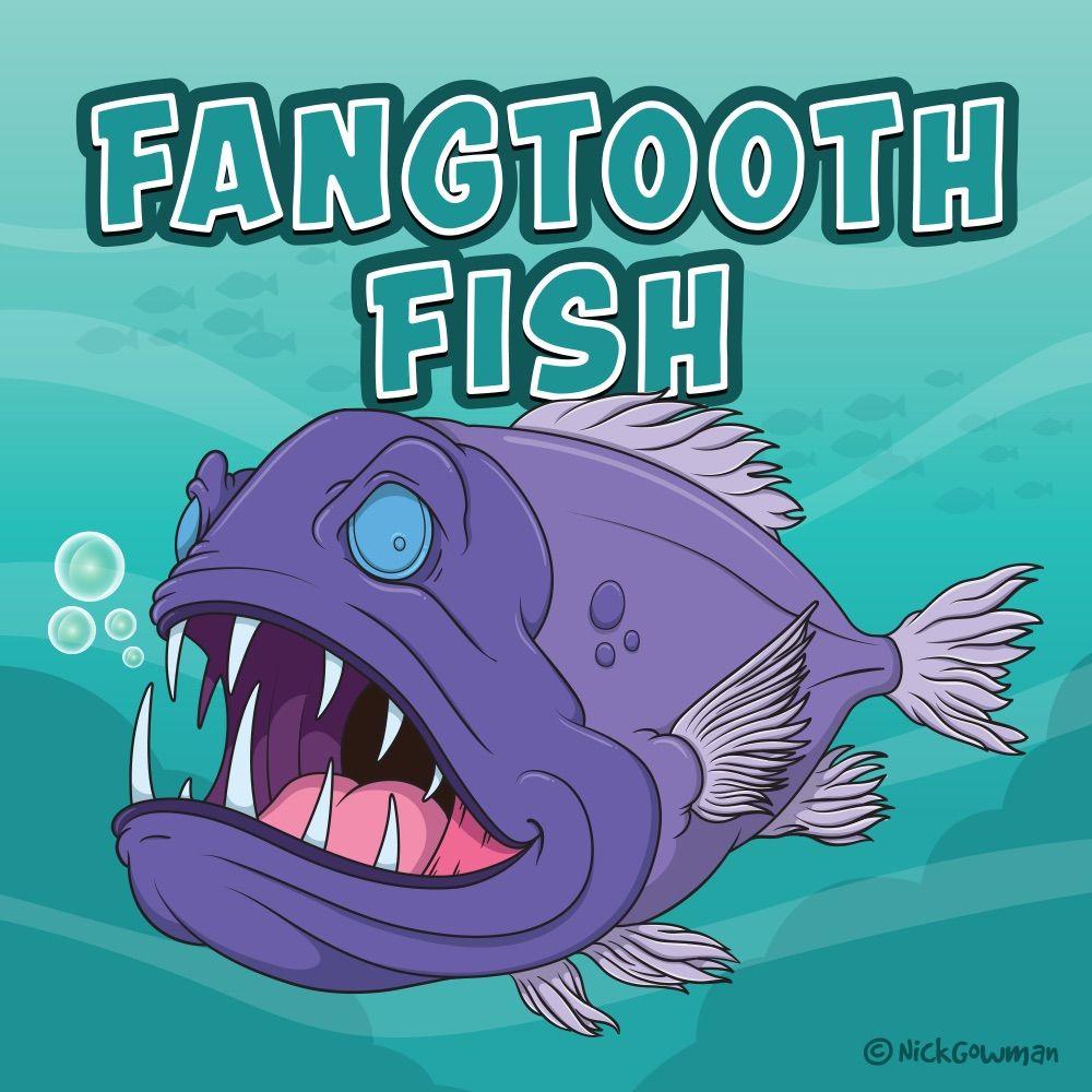 F Is For Fangtooth Fish Fish Fangtooth Fangtoothfish Deepsea